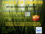 27-02-16 Francos fiesta Benefica